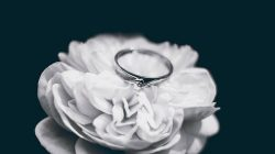 Everything You Need to Know About Rings